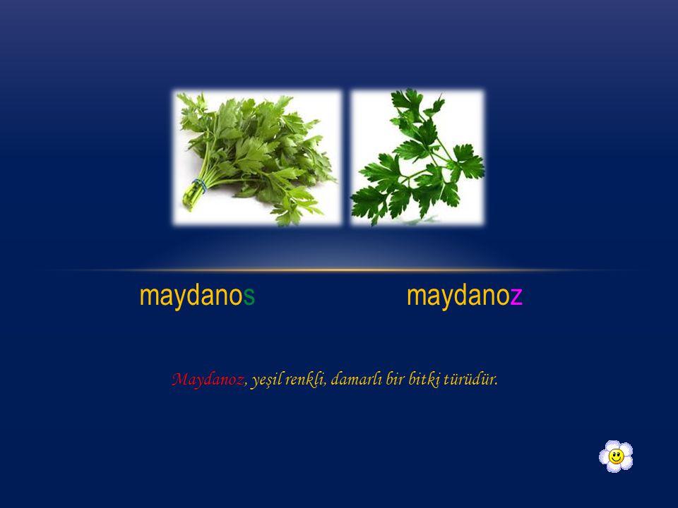 3. Aşağıdaki görsellerden hangisi yanlıştır? A ) B ) C ) Aşçı Pisküvit Meyve