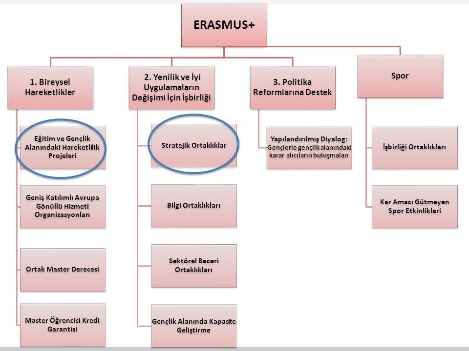 ERASMUS+ 1. Bireysel Hareketlikler Eğitim ve Gençlik Alanındaki Hareketlilik Projeleri Geniş Katılımlı Avrupa Gönüllü Hizmeti Organizasyonları Ortak M