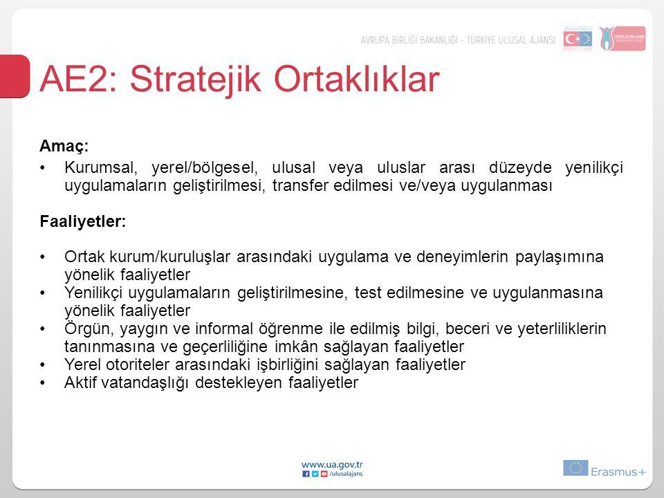 AE2: Stratejik Ortaklıklar Amaç: Kurumsal, yerel/bölgesel, ulusal veya uluslar arası düzeyde yenilikçi uygulamaların geliştirilmesi, transfer edilmesi