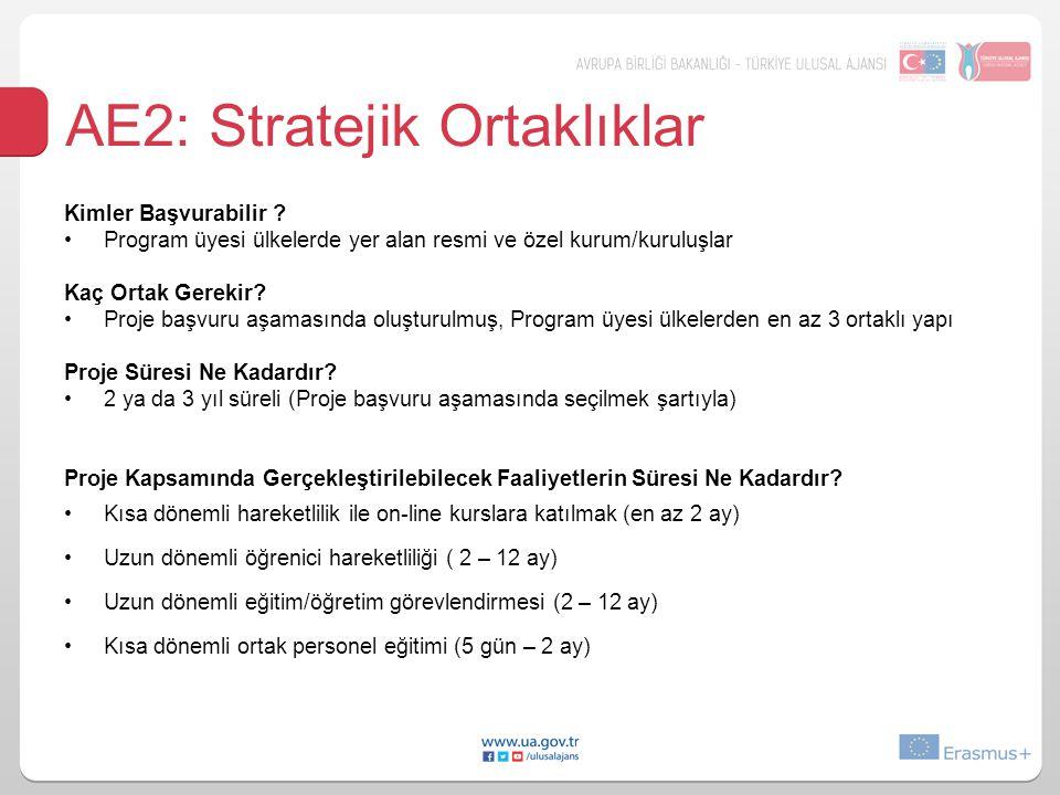 AE2: Stratejik Ortaklıklar Kimler Başvurabilir .