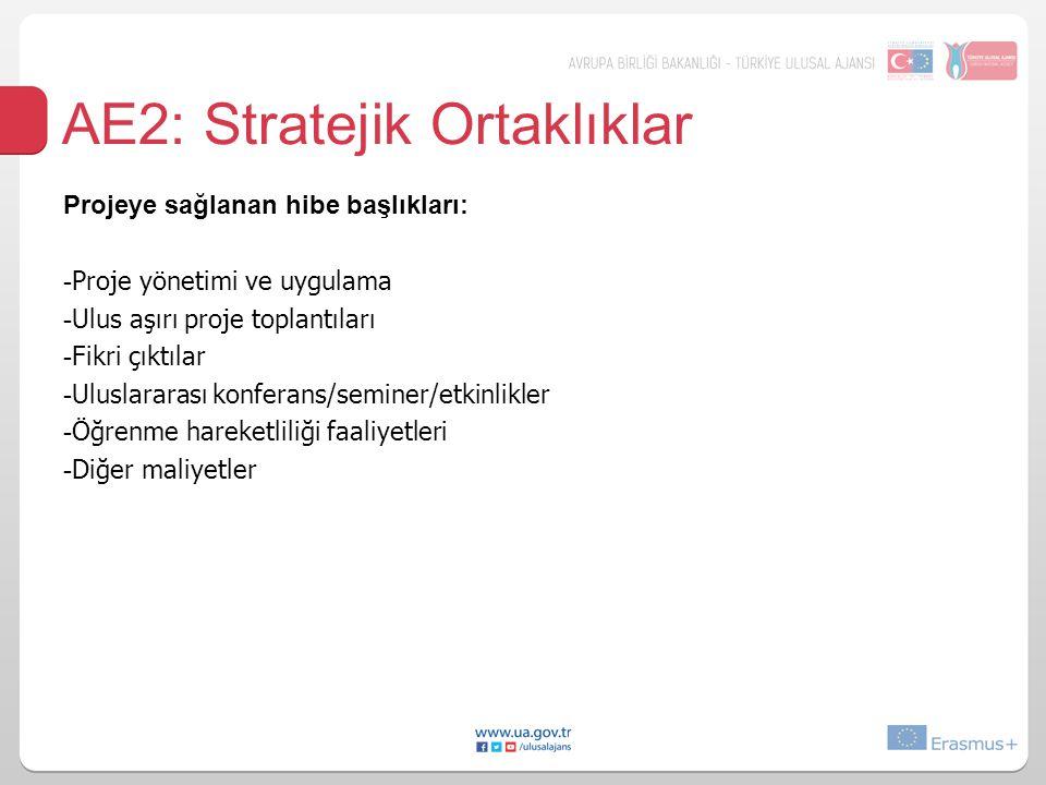 AE2: Stratejik Ortaklıklar Projeye sağlanan hibe başlıkları: - Proje yönetimi ve uygulama - Ulus aşırı proje toplantıları - Fikri çıktılar - Uluslarar