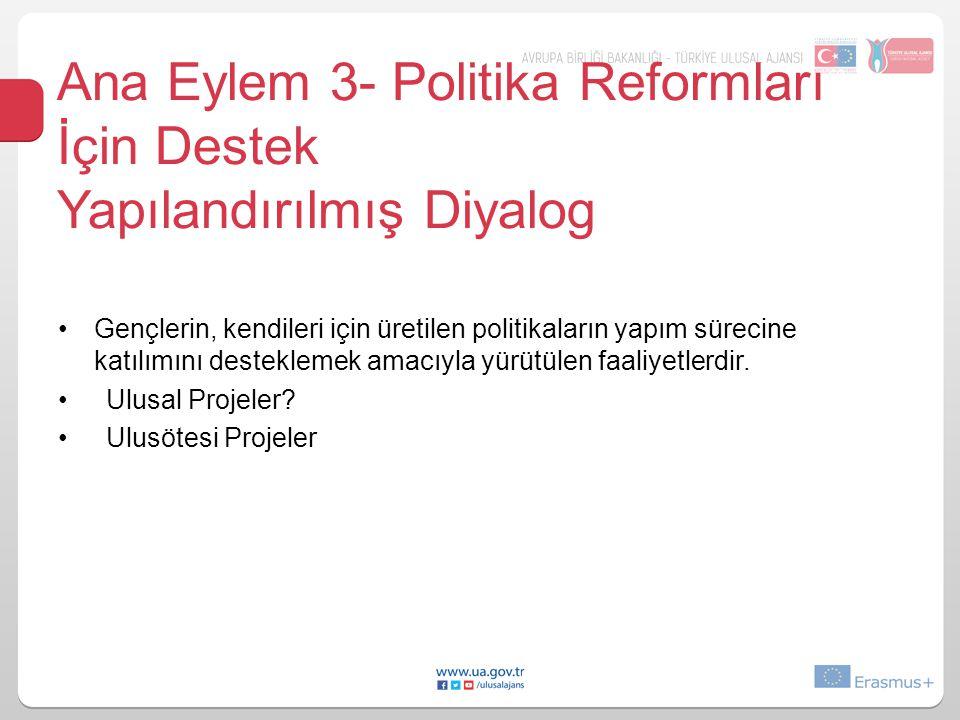 Ana Eylem 3- Politika Reformları İçin Destek Yapılandırılmış Diyalog Gençlerin, kendileri için üretilen politikaların yapım sürecine katılımını desteklemek amacıyla yürütülen faaliyetlerdir.