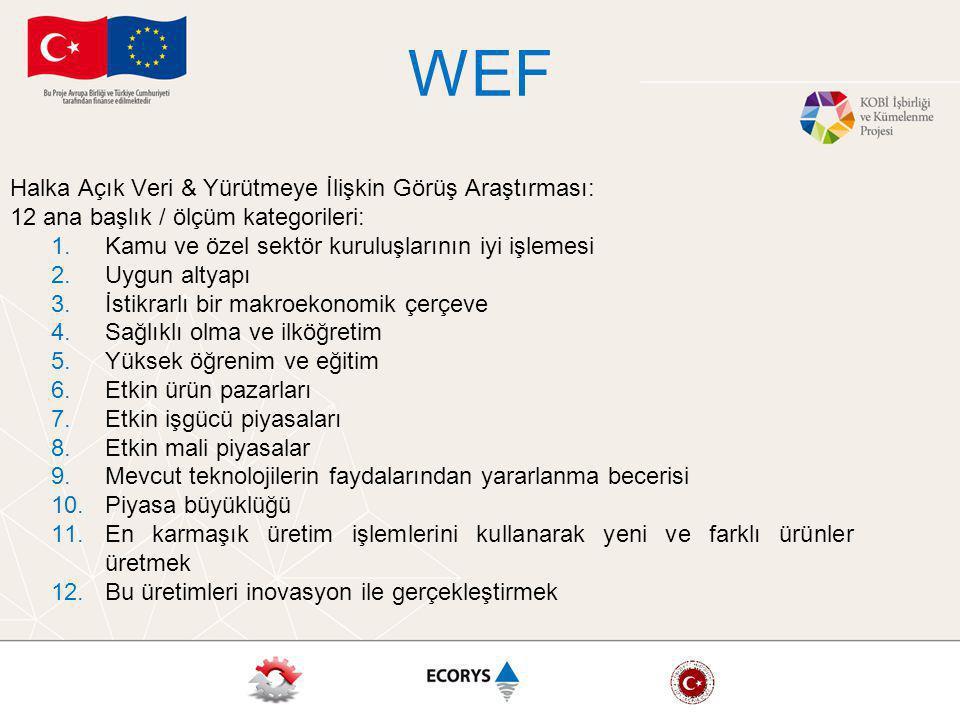 WEF Halka Açık Veri & Yürütmeye İlişkin Görüş Araştırması: 12 ana başlık / ölçüm kategorileri: 1.Kamu ve özel sektör kuruluşlarının iyi işlemesi 2.Uygun altyapı 3.İstikrarlı bir makroekonomik çerçeve 4.Sağlıklı olma ve ilköğretim 5.Yüksek öğrenim ve eğitim 6.Etkin ürün pazarları 7.Etkin işgücü piyasaları 8.Etkin mali piyasalar 9.Mevcut teknolojilerin faydalarından yararlanma becerisi 10.Piyasa büyüklüğü 11.En karmaşık üretim işlemlerini kullanarak yeni ve farklı ürünler üretmek 12.Bu üretimleri inovasyon ile gerçekleştirmek