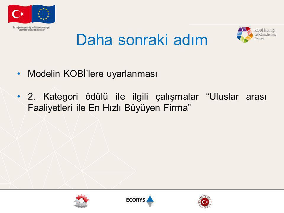 Daha sonraki adım Modelin KOBİ'lere uyarlanması 2.