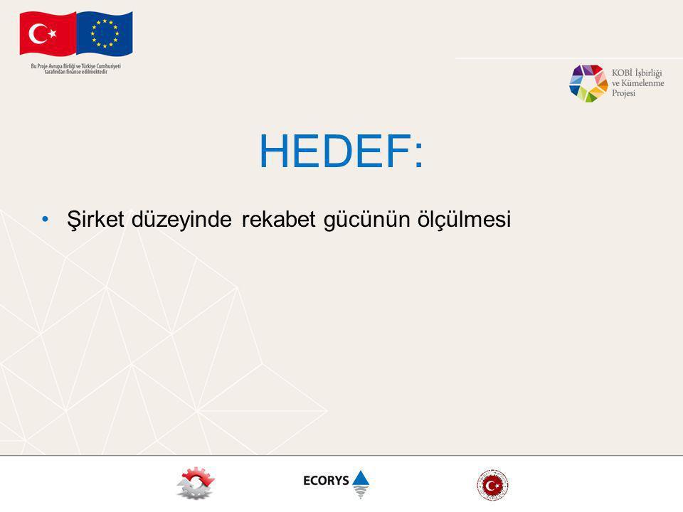 HEDEF: Şirket düzeyinde rekabet gücünün ölçülmesi
