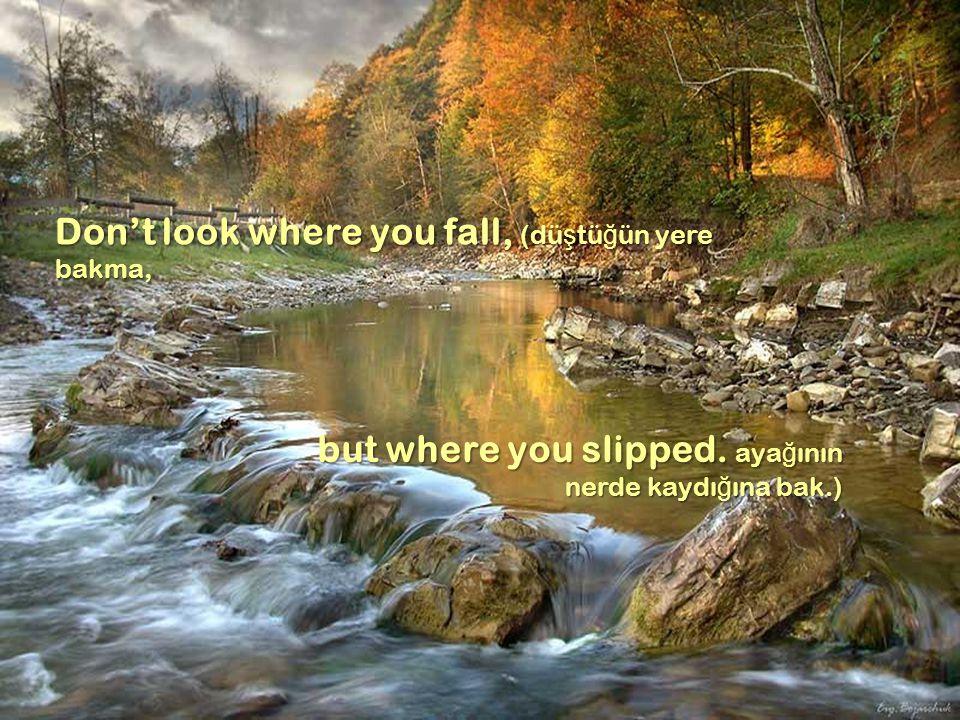 Don't look where you fall, (dü ş tü ğ ün yere bakma, but where you slipped.