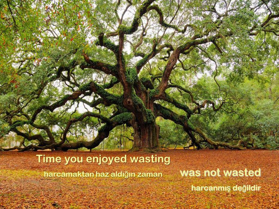 Time you enjoyed wasting harcamaktan haz aldı ğ ın zaman was not wasted harcanmı ş de ğ ildir