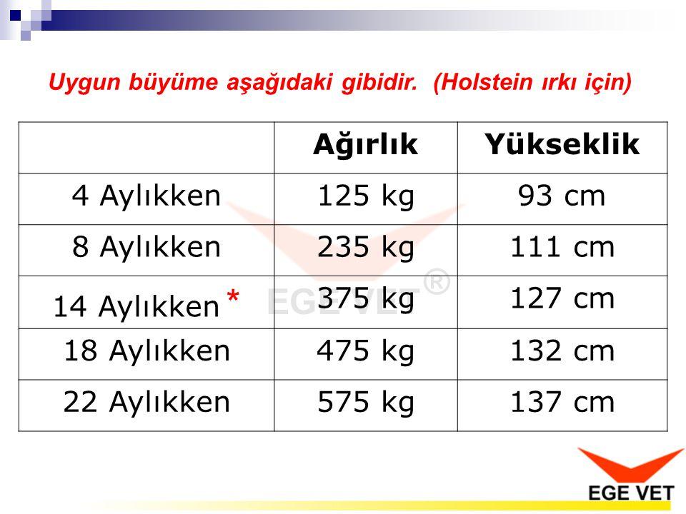 Uygun büyüme aşağıdaki gibidir. (Holstein ırkı için) AğırlıkYükseklik 4 Aylıkken125 kg93 cm 8 Aylıkken235 kg111 cm 14 Aylıkken * 375 kg127 cm 18 Aylık
