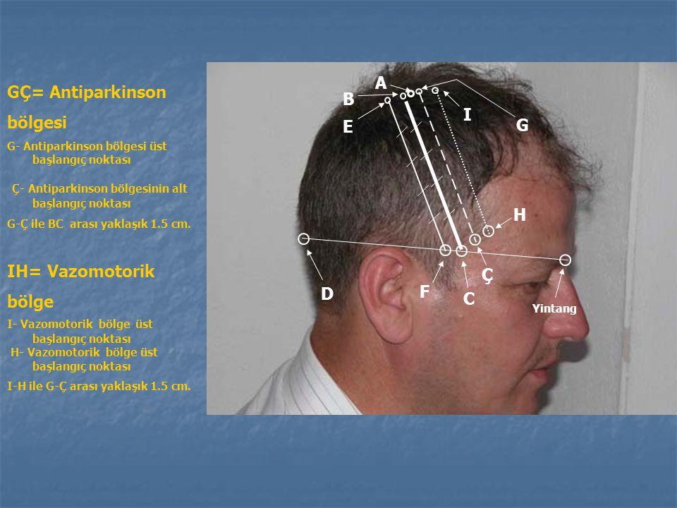 Duyu bölgesinin bölümleri 2. Orta grup =En üstten itibaren 2/5 ve 3/5'lik kısım : - Karşı taraf üst ekstremitesinin duyu bozukluklarında kullanılır. 3