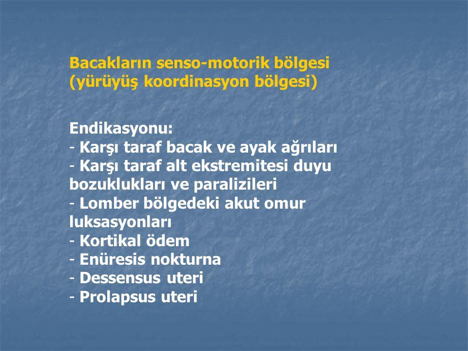 D B C Ç A Bacakların senso-motorik bölgesi (yürüyüş koordinasyon bölgesi) A: Motor bölgenin üst başlangıç noktası B: Duyu bölgesinin üst başlangıç nok