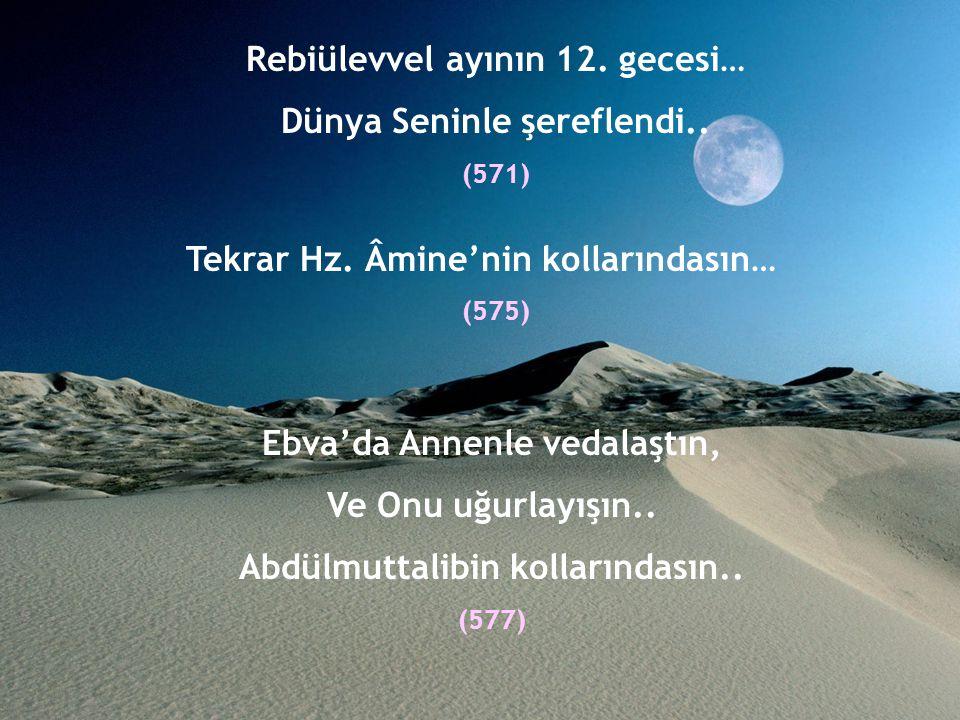 Asr-ı Saadet Örnek Hayatın