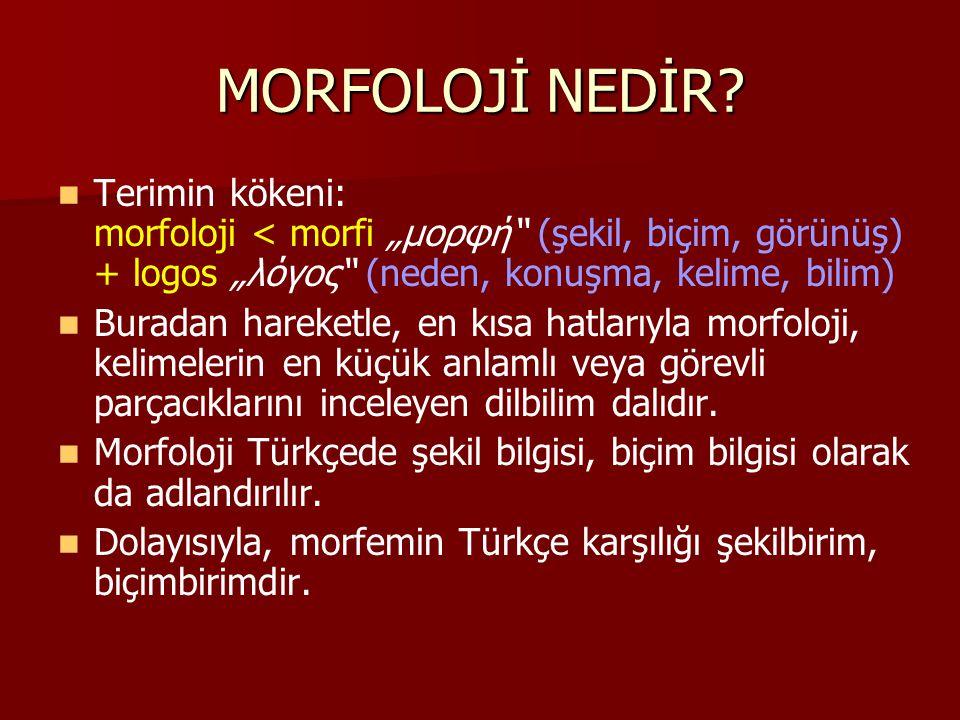 """MORFOLOJİ NEDİR? Terimin kökeni: morfoloji < morfi """"μορφή"""" (şekil, biçim, görünüş) + logos """"λόγος"""" (neden, konuşma, kelime, bilim) Buradan hareketle,"""