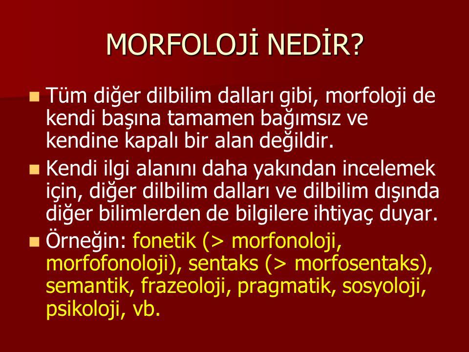 MORFOLOJİ NEDİR? Tüm diğer dilbilim dalları gibi, morfoloji de kendi başına tamamen bağımsız ve kendine kapalı bir alan değildir. Kendi ilgi alanını d