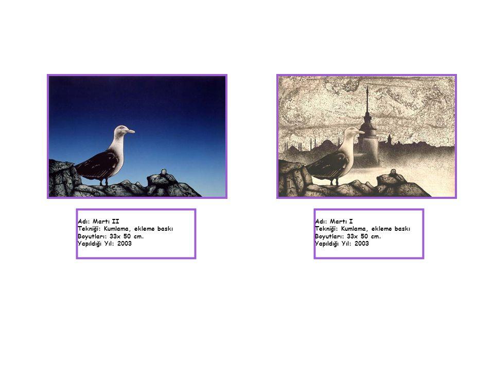 Adı: Martı II Tekniği: Kumlama, ekleme baskı Boyutları: 33x 50 cm. Yapıldığı Yıl: 2003 Adı: Martı I Tekniği: Kumlama, ekleme baskı Boyutları: 33x 50 c