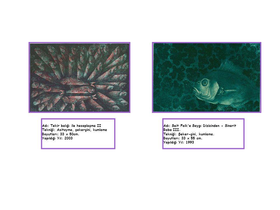 Adı: Tekir balığı ile hesaplaşma II Tekniği: Asitoyma, şekerçini, kumlama Boyutları: 33 x 50cm. Yapıldığı Yıl: 2003 Adı: Sait Faik'e Saygı Dizisinden