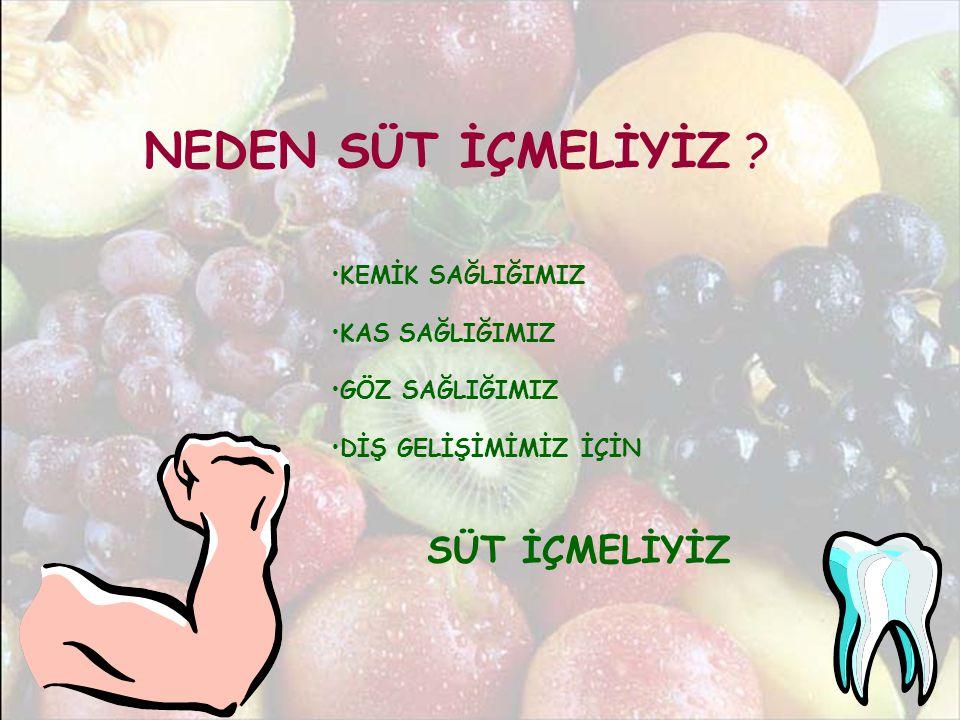 NEDEN SÜT İÇMELİYİZ .