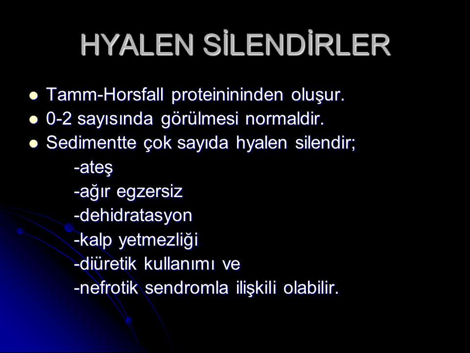 HYALEN SİLENDİRLER Tamm-Horsfall proteinininden oluşur. Tamm-Horsfall proteinininden oluşur. 0-2 sayısında görülmesi normaldir. 0-2 sayısında görülmes
