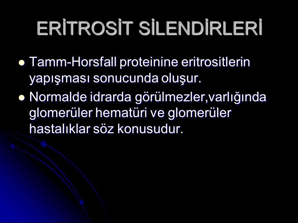 ERİTROSİT SİLENDİRLERİ Tamm-Horsfall proteinine eritrositlerin yapışması sonucunda oluşur. Tamm-Horsfall proteinine eritrositlerin yapışması sonucunda