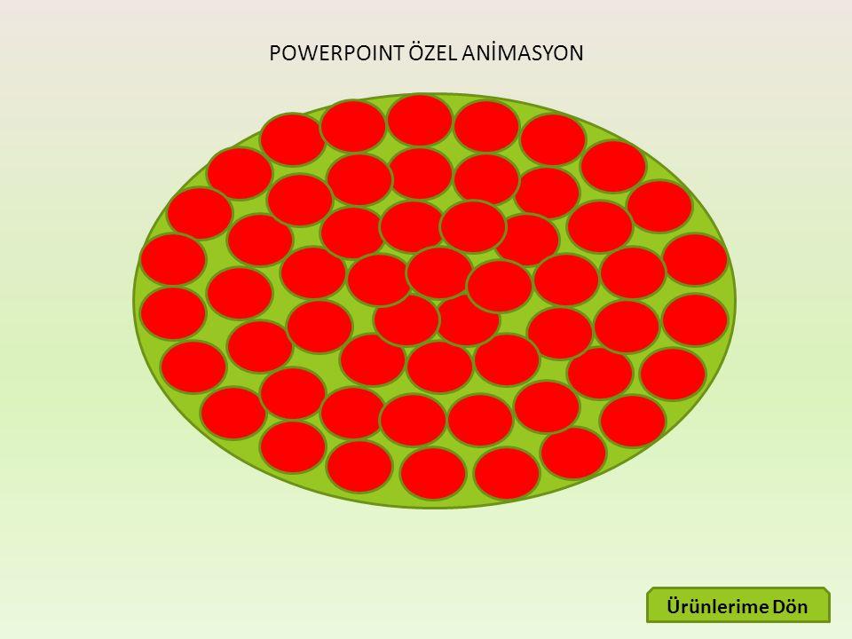 POWERPOINT ÖZEL ANİMASYON