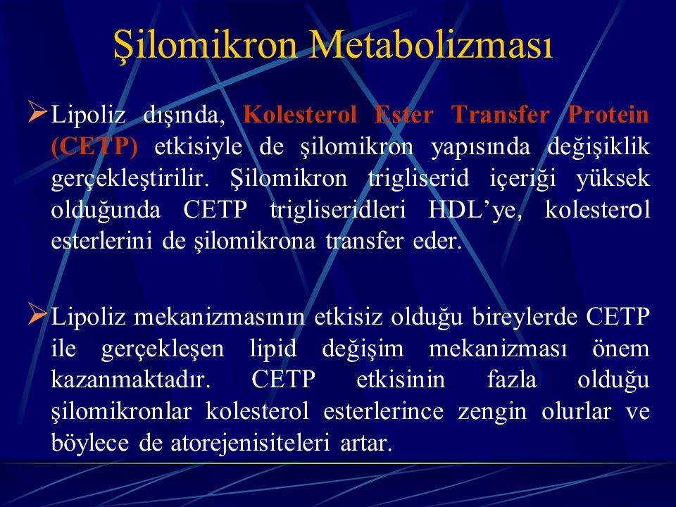 Şilomikron Metabolizması  Lipoliz dışında, Kolesterol Ester Transfer Protein (CETP) etkisiyle de şilomikron yapısında değişiklik gerçekleştirilir. Şi