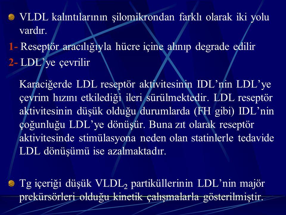 VLDL kalıntılarının şilomikrondan farklı olarak iki yolu vardır. 1- Reseptör aracılığıyla hücre içine alınıp degrade edilir 2- LDL'ye çevrilir Karaciğ
