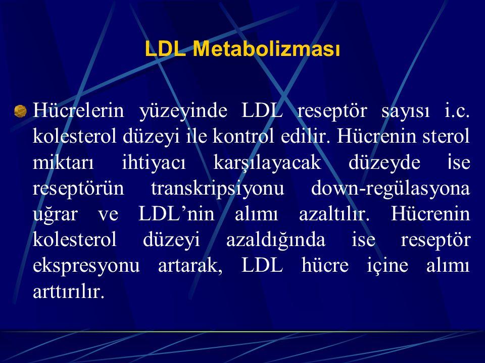 LDL Metabolizması Hücrelerin yüzeyinde LDL reseptör sayısı i.c. kolesterol düzeyi ile kontrol edilir. Hücrenin sterol miktarı ihtiyacı karşılayacak dü