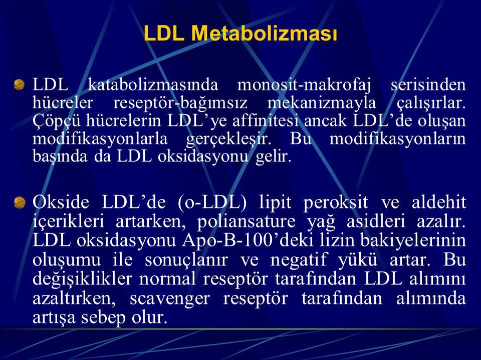 LDL Metabolizması LDL katabolizmasında monosit-makrofaj serisinden hücreler reseptör-bağımsız mekanizmayla çalışırlar. Çöpçü hücrelerin LDL'ye affinit