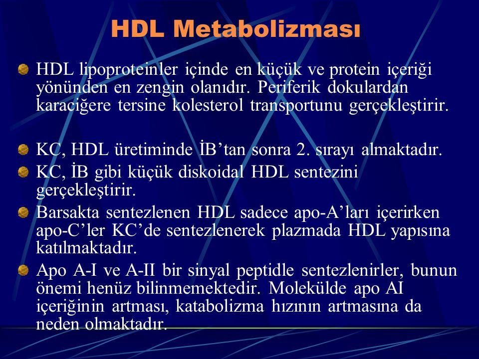 HDL Metabolizması HDL lipoproteinler içinde en küçük ve protein içeriği yönünden en zengin olanıdır. Periferik dokulardan karaciğere tersine kolestero