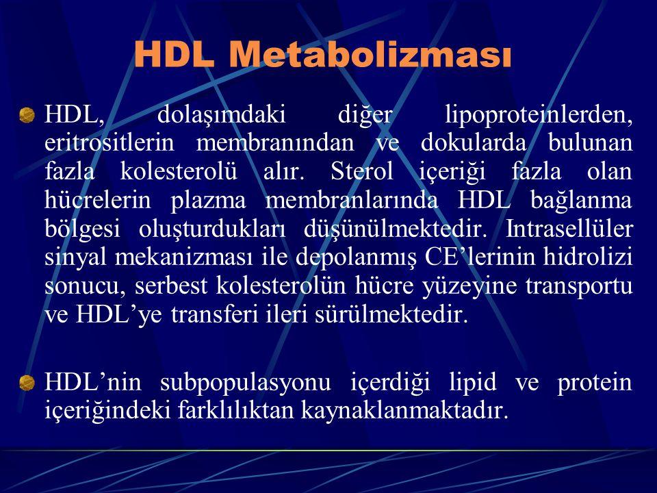 HDL Metabolizması HDL, dolaşımdaki diğer lipoproteinlerden, eritrositlerin membranından ve dokularda bulunan fazla kolesterolü alır. Sterol içeriği fa