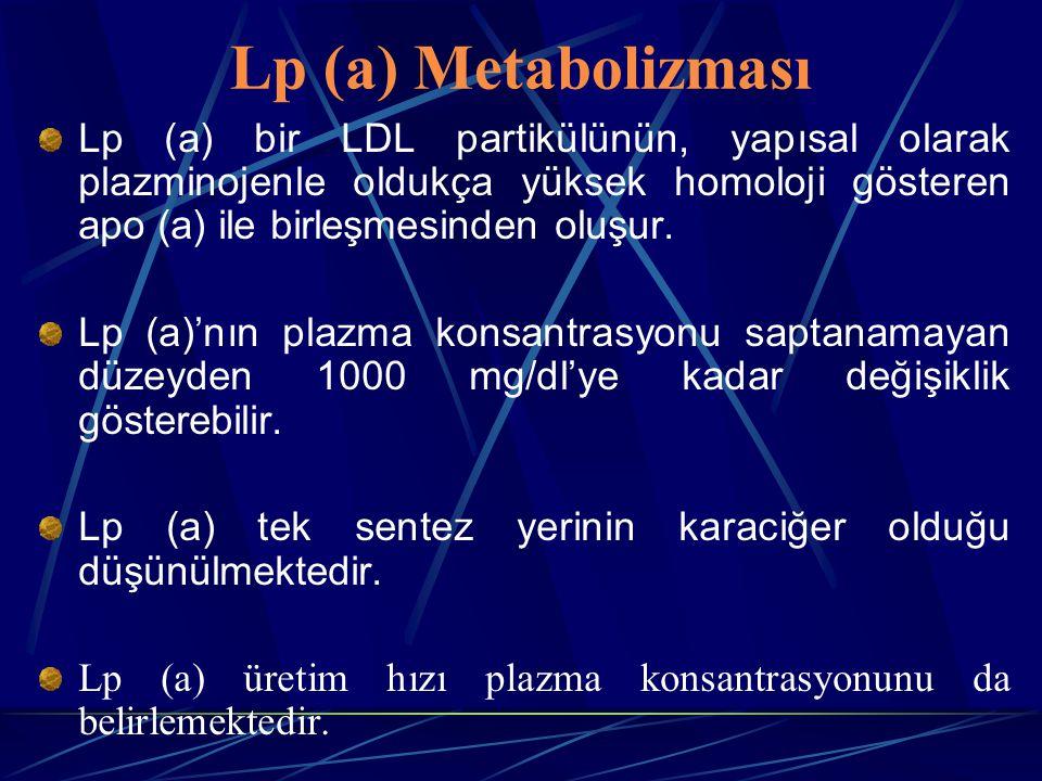 Lp (a) Metabolizması Lp (a) bir LDL partikülünün, yapısal olarak plazminojenle oldukça yüksek homoloji gösteren apo (a) ile birleşmesinden oluşur. Lp