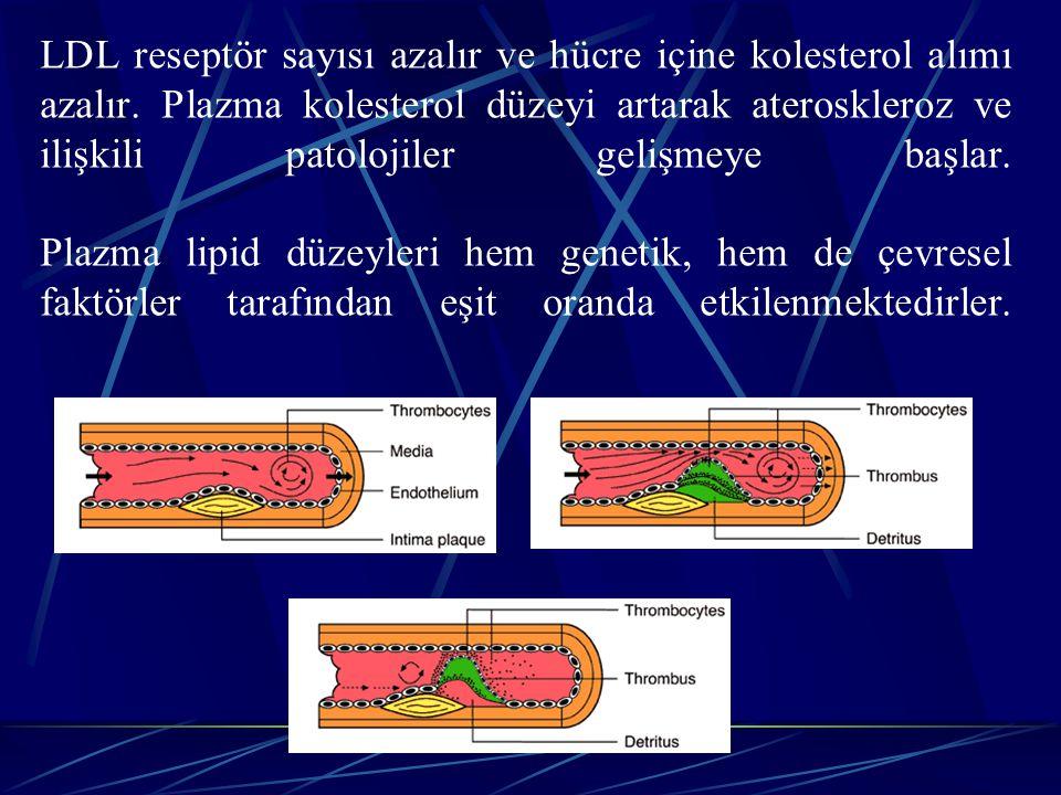 LDL reseptör sayısı azalır ve hücre içine kolesterol alımı azalır. Plazma kolesterol düzeyi artarak ateroskleroz ve ilişkili patolojiler gelişmeye baş