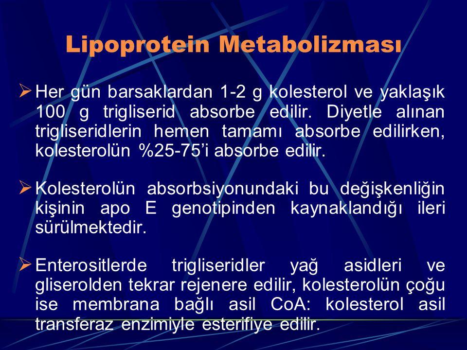 Lipoprotein Metabolizması  Her gün barsaklardan 1-2 g kolesterol ve yaklaşık 100 g trigliserid absorbe edilir. Diyetle alınan trigliseridlerin hemen