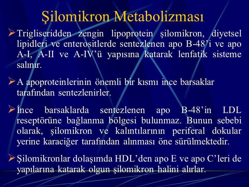 Şilomikron Metabolizması  Trigliseridden zengin lipoprotein şilomikron, diyetsel lipidleri ve enterositlerde sentezlenen apo B-48'i ve apo A-I, A-II