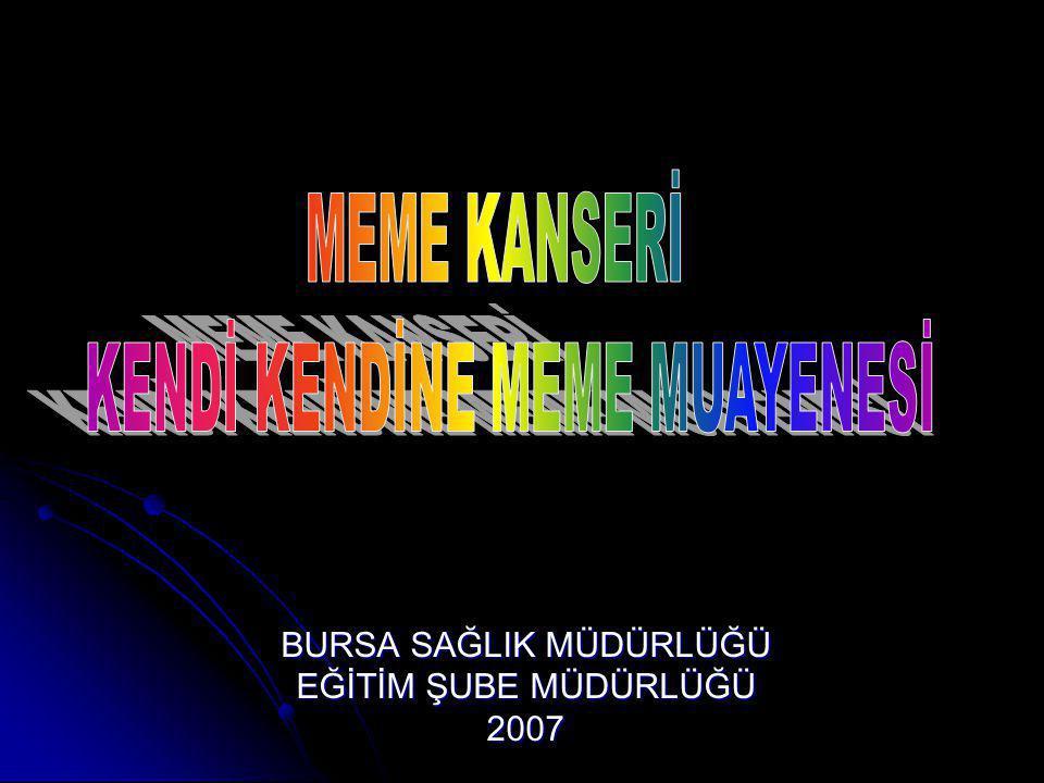 BURSA SAĞLIK MÜDÜRLÜĞÜ EĞİTİM ŞUBE MÜDÜRLÜĞÜ 2007