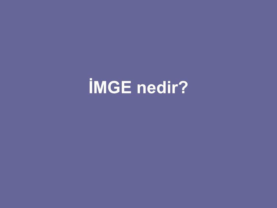İMGE nedir?