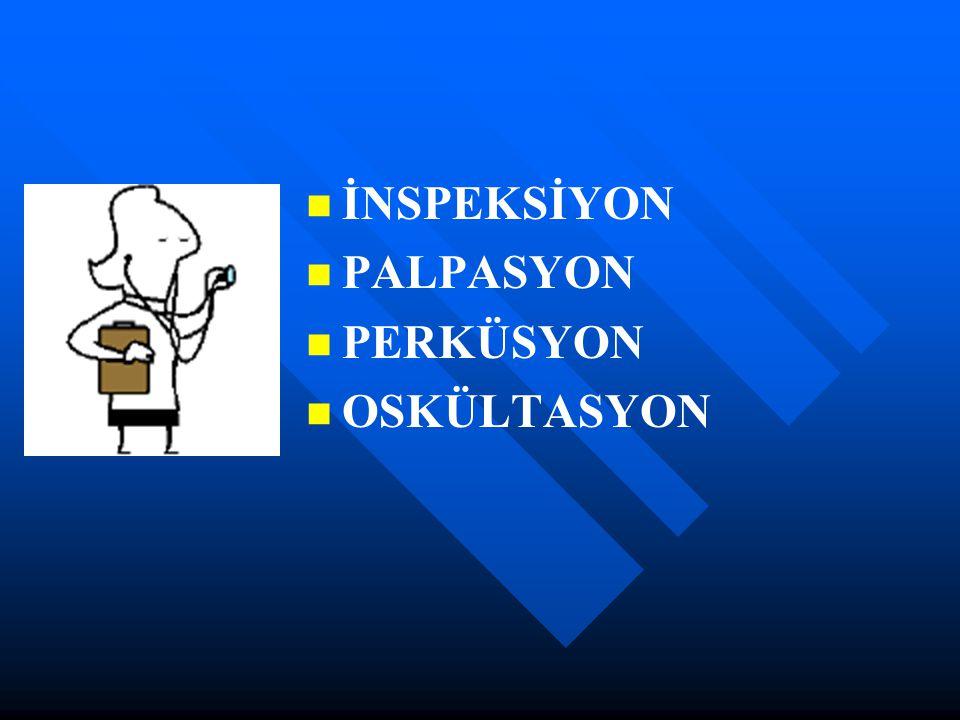 İNSPEKSİYON PALPASYON PERKÜSYON OSKÜLTASYON