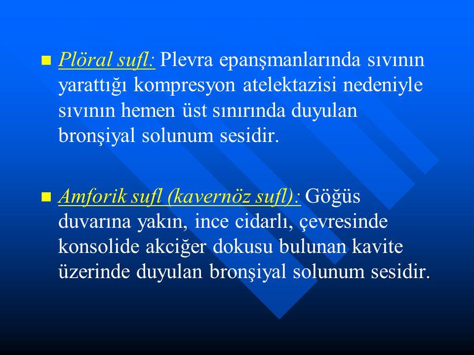 Plöral sufl: Plevra epanşmanlarında sıvının yarattığı kompresyon atelektazisi nedeniyle sıvının hemen üst sınırında duyulan bronşiyal solunum sesidir.