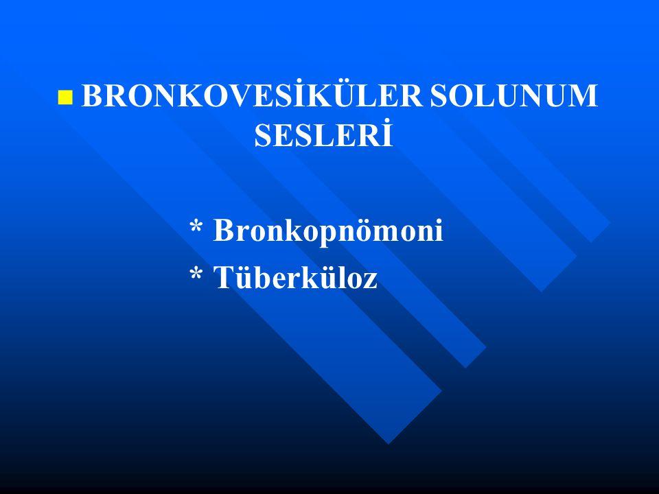 BRONKOVESİKÜLER SOLUNUM SESLERİ * Bronkopnömoni * Tüberküloz