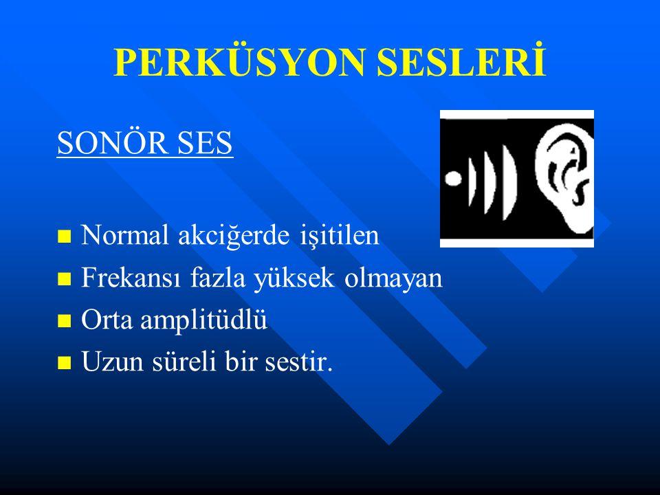 PERKÜSYON SESLERİ SONÖR SES Normal akciğerde işitilen Frekansı fazla yüksek olmayan Orta amplitüdlü Uzun süreli bir sestir.