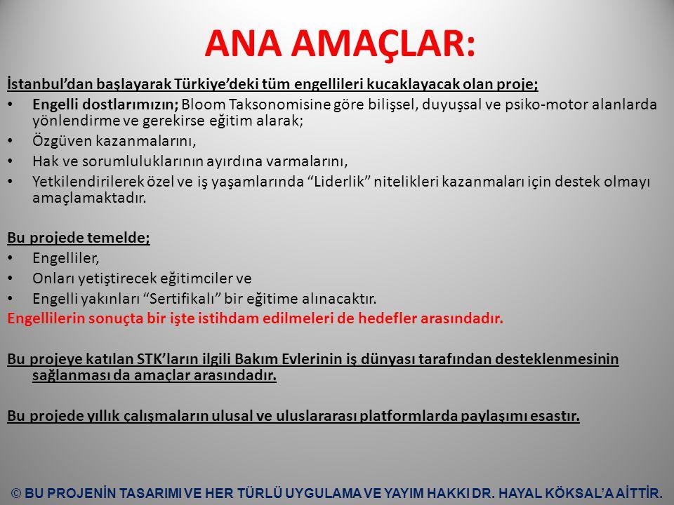ANA AMAÇLAR: İstanbul'dan başlayarak Türkiye'deki tüm engellileri kucaklayacak olan proje; Engelli dostlarımızın; Bloom Taksonomisine göre bilişsel, d