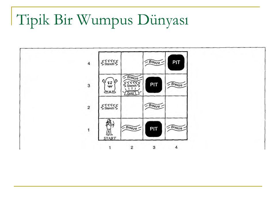 Tipik Bir Wumpus Dünyası