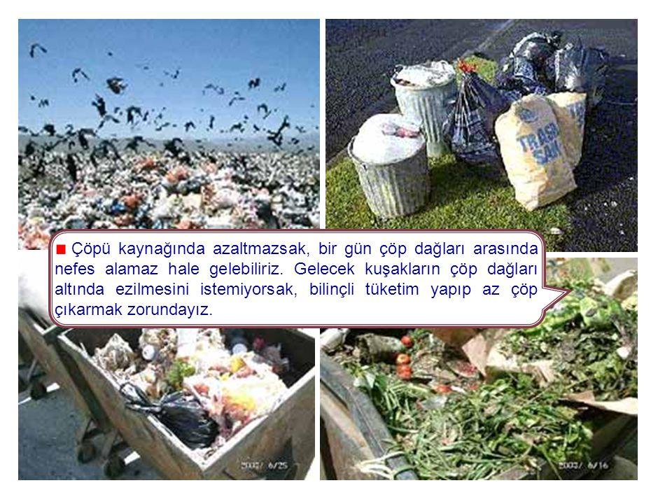 """Çöpler nereye dökülmelidir? Bugün pek çok yerleşim merkezinde çöpler, """"çöplük"""" denilen alanlara gelişi güzel dökülmekte ve zamanında toplanmamaktadır."""