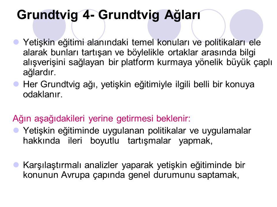 Grundtvig 4- Grundtvig Ağları Yetişkin eğitimi alanındaki temel konuları ve politikaları ele alarak bunları tartışan ve böylelikle ortaklar arasında b