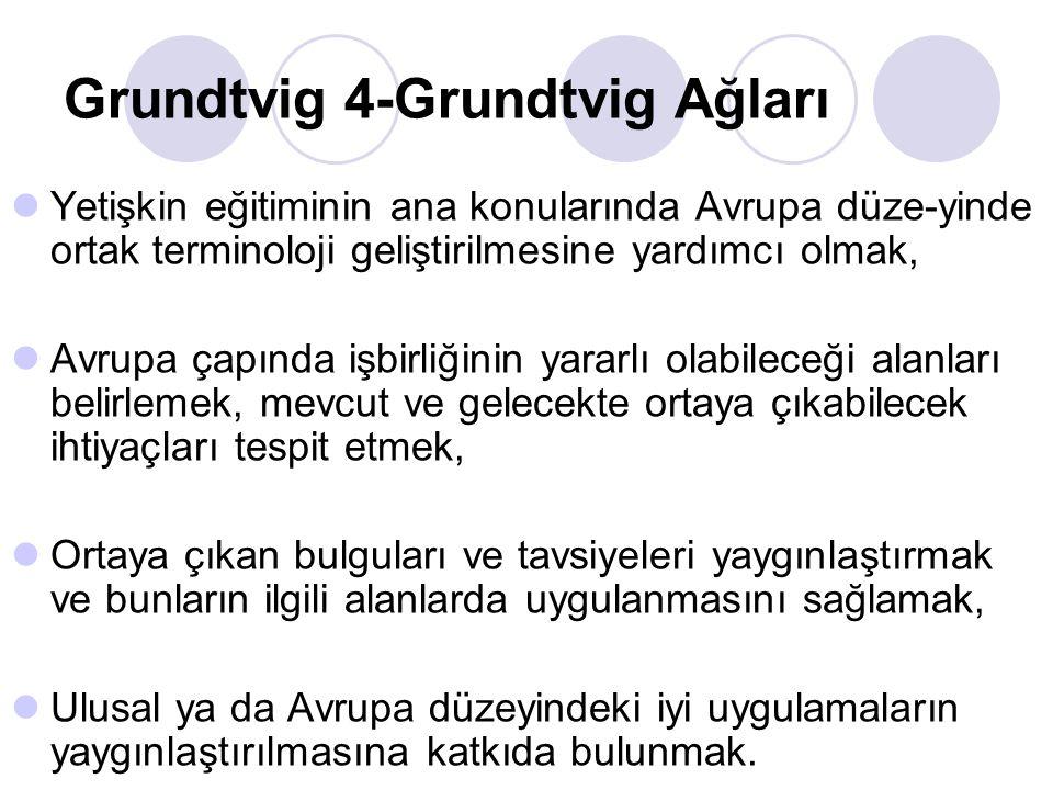 Grundtvig 4-Grundtvig Ağları Yetişkin eğitiminin ana konularında Avrupa düze-yinde ortak terminoloji geliştirilmesine yardımcı olmak, Avrupa çapında i