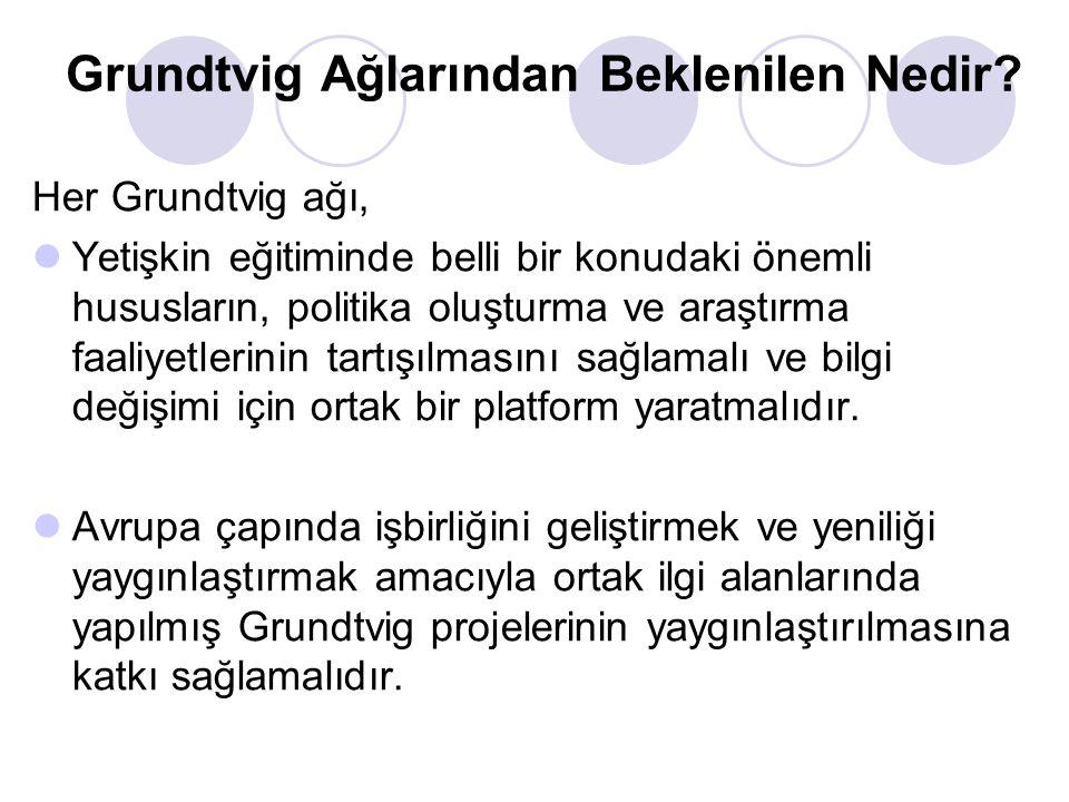 Grundtvig Ağlarından Beklenilen Nedir? Her Grundtvig ağı, Yetişkin eğitiminde belli bir konudaki önemli hususların, politika oluşturma ve araştırma fa