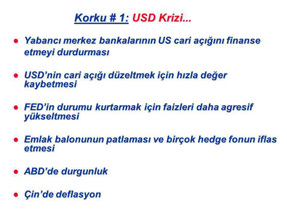 Korku # 1: USD Krizi...