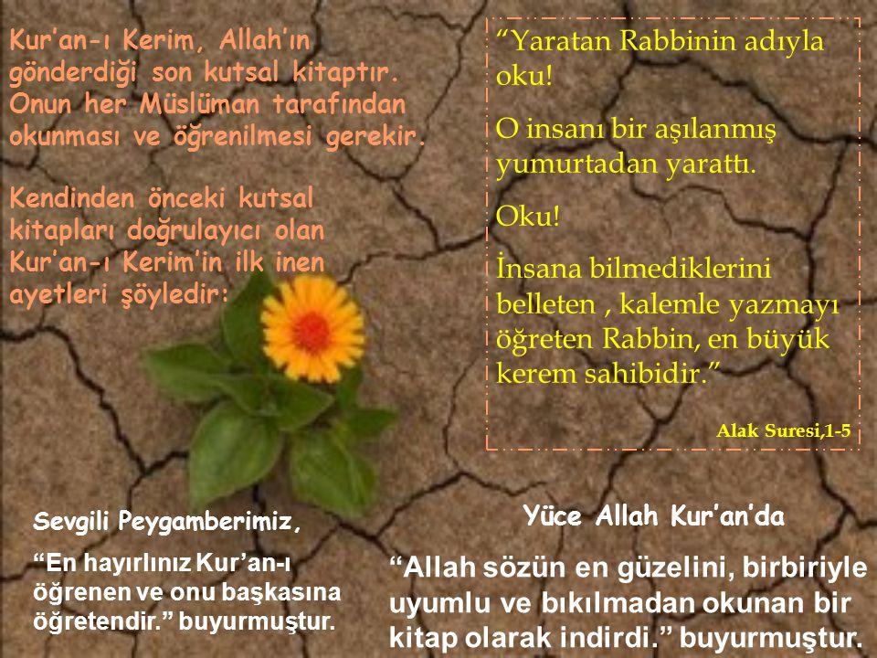 Kur'an-ı Kerim, Hz.Muhammed'e vahiy yoluyla, 23 yılda, bölüm bölüm ve Arapça olara gönderilmiştir.