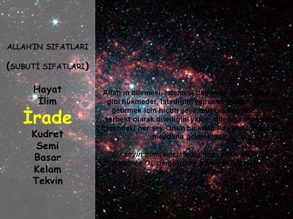 Allah'ın her şeyi bilmesi demektir. Evrendeki hiçbir şey Onun bilgisinin dışında değildir. Allah'ın ilmi her şeyi kuşatmıştır. Onun ilmi ezelîdir, sın