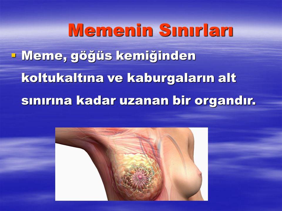 MEME KANSERİNİN UYARICI BELİRTİLERİ - 1