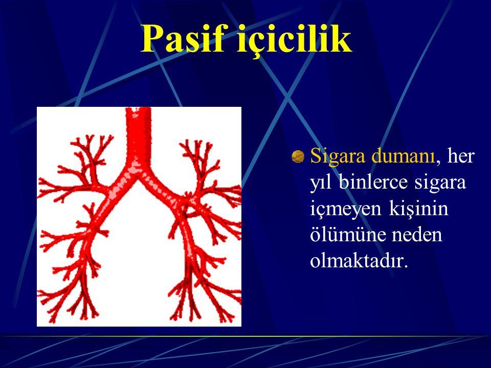 Pasif içicilik Sigara dumanı, her yıl binlerce sigara içmeyen kişinin ölümüne neden olmaktadır.